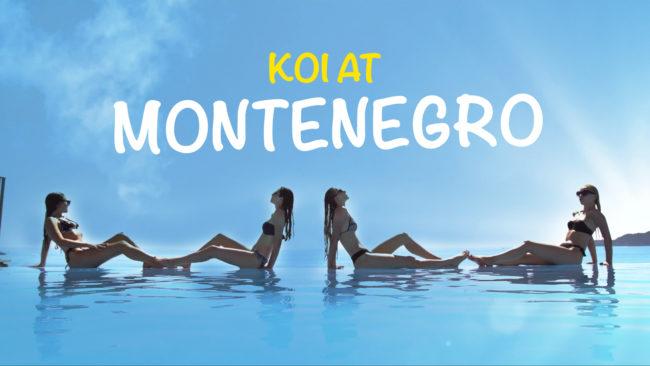 KOI AT MONTENEGRO